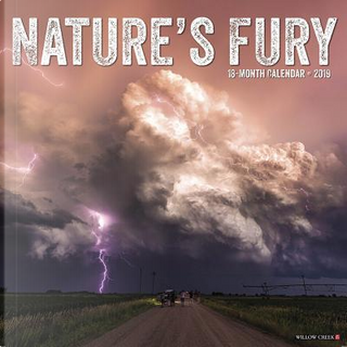 Nature's Fury 2019 Calendar by Willow Creek Press