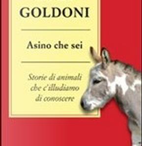 Asino che sei by Luca Goldoni