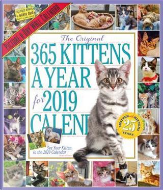 The Original 365 Kittens a Year 2019 Calendar by Workman Pub Co