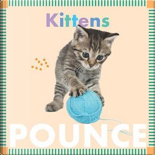 Kittens Pounce by Rebecca Glaser