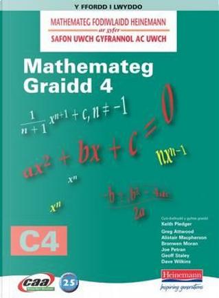 Mathemateg Fodiwlaidd Heinemann by Amrywiol/ Various