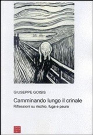 Camminando lungo il crinale by Giuseppe Goisis