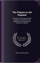 The Pilgrim in Old England by Amory Howe Bradford