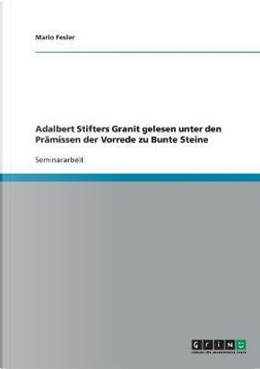 Adalbert Stifters Granit gelesen unter den Prämissen der Vorrede zu Bunte Steine by Mario Fesler