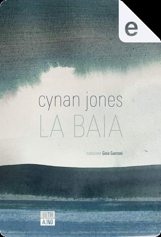 La baia by Cynan Jones