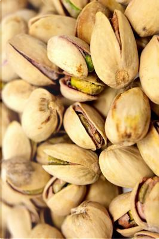 Pistachio Nuts Journal by Cool Image