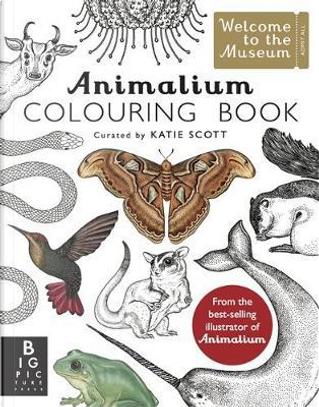 Animalium Colouring Book by Katie Scott