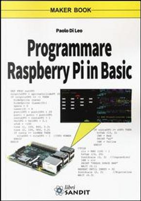 Programmare Raspberry Pi in Basic by Paolo Di Leo
