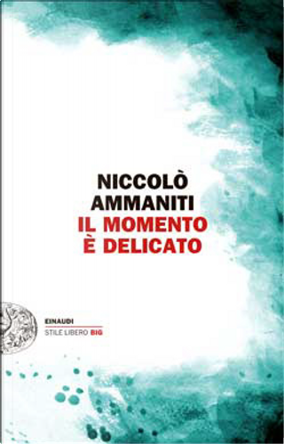 Il momento è delicato by Niccolò Ammaniti