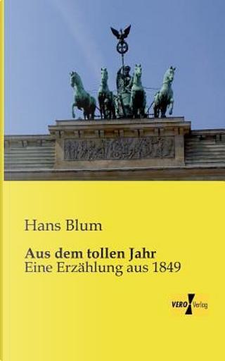 Aus dem tollen Jahr - Eine Erzaehlung aus 1849 by Hans Blum