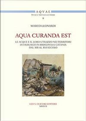 Aqua curanda est. Le acque e il loro utilizzo nei territori di Friburgo in Brisgovia e Catania dal XIII al XVI secolo by Marco Leonardi