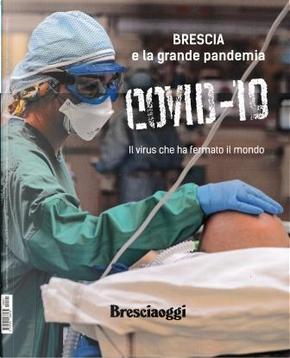Covid-19. Brescia e la grande pandemia