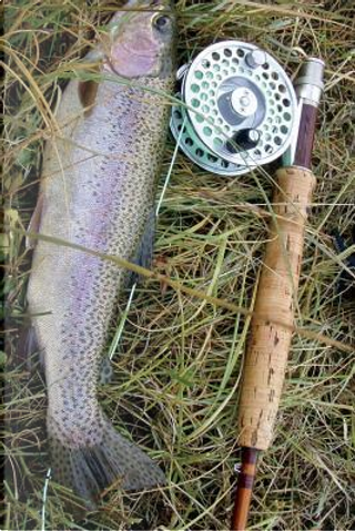 Caught a Rainbow Trout with a Fly Rod Fishing Journal by Pen2 Paper