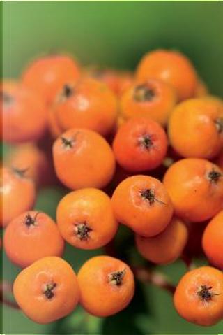 Orange Rowan Mountain Ash Berries Journal by Pen2 Paper