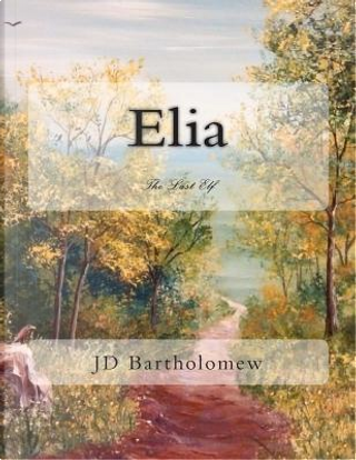 The Last Elf by J. D. Bartholomew