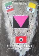 Un triangolo rosa by Paolo Arigotti