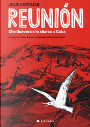 Reunion by Julio Cortazar