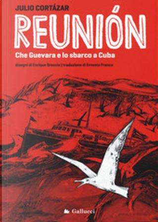 Reunion by Julio Cortazar