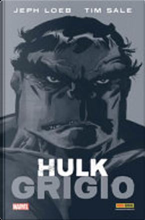 Hulk – Grigio by Jeph Loeb, Tim Sale