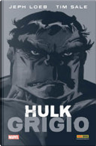 Hulk – Grigio by Tim Sale, Jeph Loeb