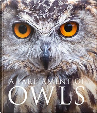A Parliament of Owls by Mike Unwin