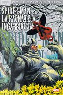 Spider-Man: La ragnatela ingarbugliata by Duncan Fegredo, Eduardo Risso, Garth Ennis, Greg Rucka, John McCrea, Peter Milligan
