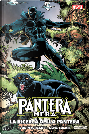 Pantera Nera by Don McGregor