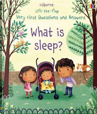 Very First Lift-the-Flap Questions & Answers What is Sleep? (Lift the Flap Very First Questions & Answers) by Katie Daynes