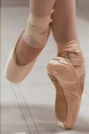 Ballerina Journal by Anabelle Lenre
