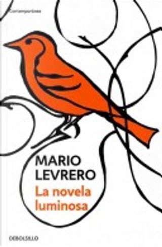 La novela luminosa/ The Bright novel by Mario Levrero