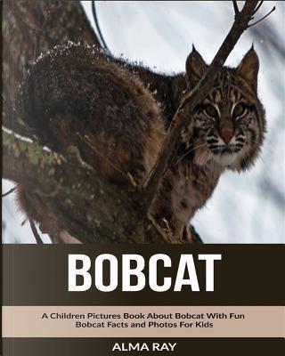 Bobcat by Alma Ray