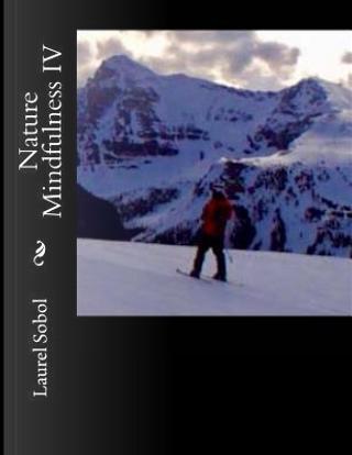 Nature Mindfulness IV by Laurel Marie Sobol