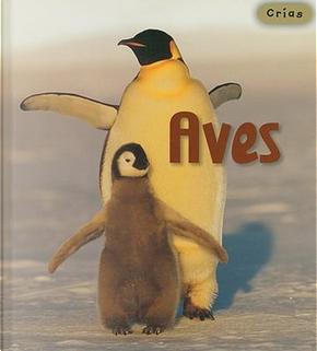 Aves/ Birds by Rod Theodorou
