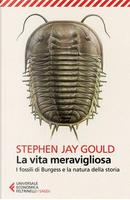 La vita meravigliosa. I fossili di Burgess e la natura della storia by Stephen Jay Gould