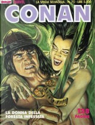 Conan La spada selvaggia n. 75 by Alan Zelenetz, Charles Dixon, Michael Fleischer
