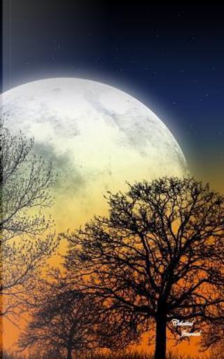 Celestial Journal by Ij Publishing Llc
