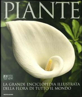 Piante by Janet Marinelli
