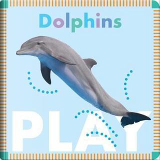 Dolphins Play by Rebecca Glaser