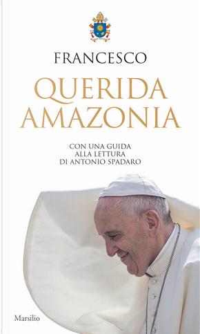 Querida Amazonia by Franciscus