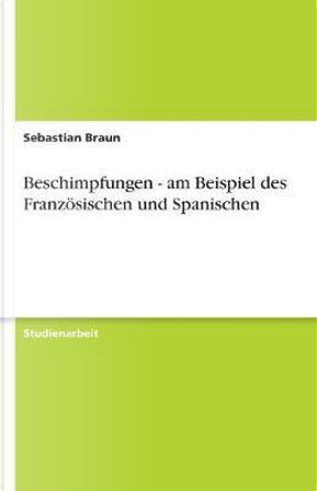 Beschimpfungen - am Beispiel des Französischen und Spanischen by Sebastian Braun