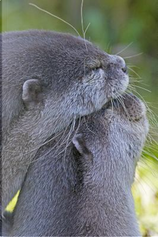 Two Loving Otters Journal by CS Creations