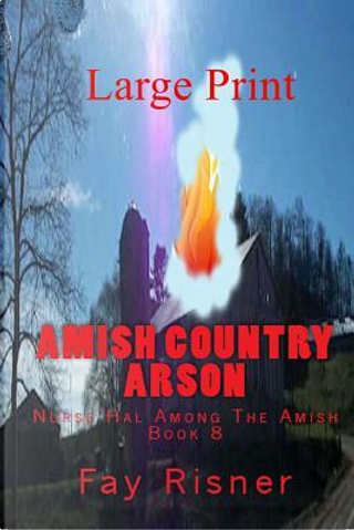 Amish Country Arson by Fay Risner