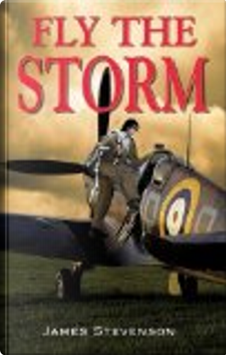 Fly the Storm by James Stevenson