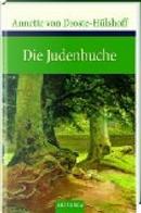 Die Judenbuche. Ein Sittengemälde aus dem gebirgigten Westfalen by Annette von Droste-Hülshoff