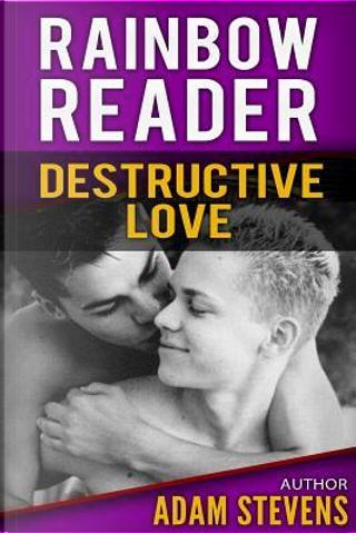 Destructive Love by Adam Stevens