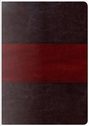 Holman KJV Study Bible by Holman Bible