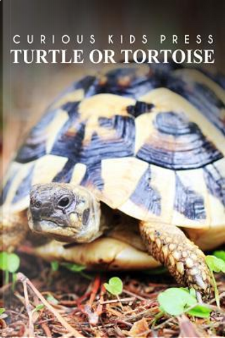 Turtle or Tortoise by Curious Kids Press
