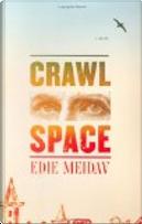 Crawl Space by Edie Meidav