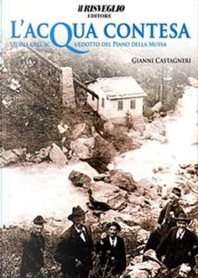 L'acqua contesa by Gianni Castagneri