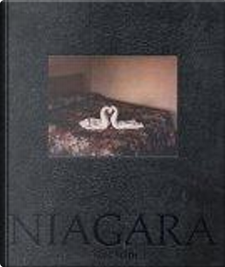 Niagara by Philip Brookman, Alec Soth, Richard Ford